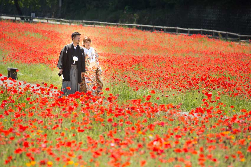 ザ・マーキーズ(ホテル&ウエディング) 新婚旅行フォトプラン 海外旅行者向け イメージ3